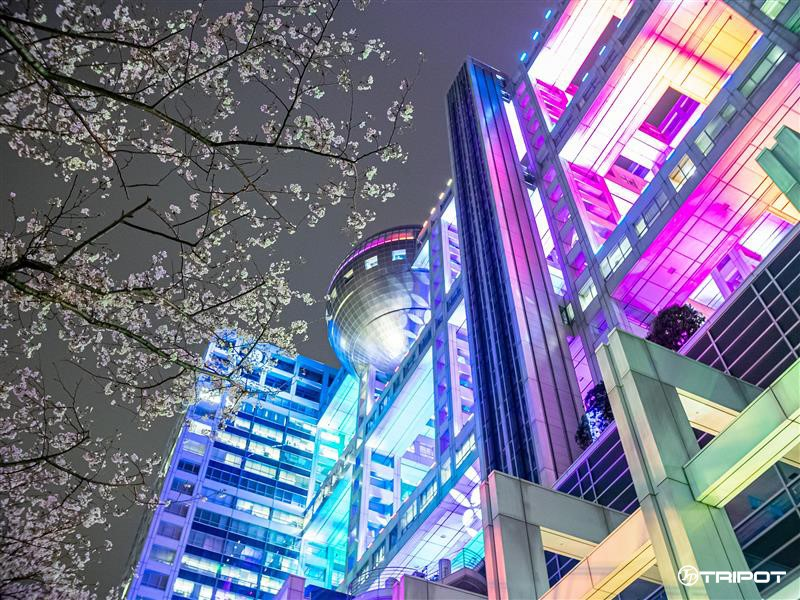 Fuji TV's Illumination AURORA∞ - Main Headquarter Building
